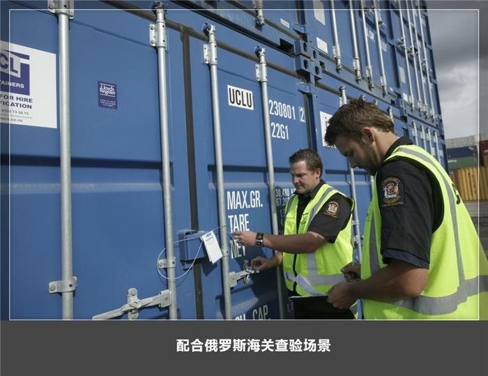 俄罗斯海运专线  俄罗斯拼箱 中国到莫斯科图片_7